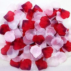 ZiMeng 3000Pcs Assorted Mixed Silk Rose Petals Artificial Flower Petals for Weddings, Events and Decorating