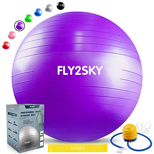 FLY2SKY Stability Ball Exercise Fitness Ball Workout Yoga