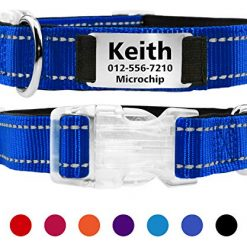 Taglory Personalized Dog Collar with Name Plate/Custome Engraved Pet ID Tags No Noise/Reflective Collars Training for Small Medium Large Dogs/Dark Blue