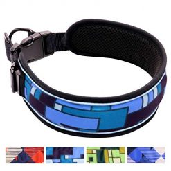 Taglory 2019 Newest Padded Martingale Dog Collars,Stylish Checkered Pattern and Unique Adjustment Design Dog Collars,Fits Large Dogs Training and Walking,Blue L
