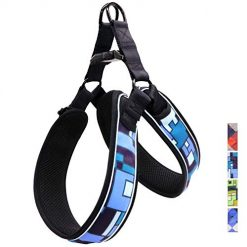 Taglory Dog Harness, Mess Padded Soft Harness, Fashion Pattern, Adjustable Pet Vet for Walking and Training,Fits Medium Dogs,Blue