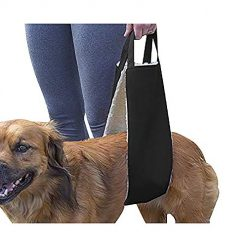 HNYG Dog Lifting Harness Sling for Rear Legs, Dog Lifter, Pet Sling, Dog Leg Brace, Black