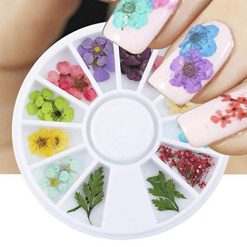 Pagacat Dried Flower Nail Art Decor Dry Floral Leaf DIY Sticker DIY Nail Gel Ornaments Stickers & Decals