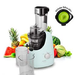 COMFEE' MJ-WJS2005PW Slow Masticating Juicer, 1L, Pea Green
