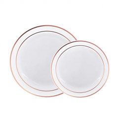 60 Pack Disposable Plastic Plates-30 x 10.25