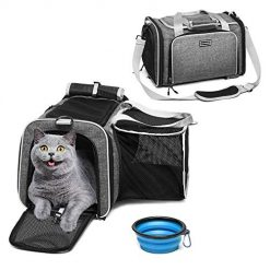 Amazon Coupon Discount Code Deal: ACCOFASH Premium Airline Approved Expandable Pet Carrier-One Side Expansion Pet Travel Outdoor Backpack Carrier Foldable Bag-Designed for Cats, Dogs, Kittens,Puppies-Extra Spacious Soft Sided Carrier