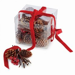 Napa Home & Garden Pine Cone & Berry Fill in Box