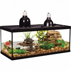 30 Gallon Fish Tank, Tetra Deluxe Aquatic Turtle Kit, 20-Gallon, 30 x 12 x 12-Inches